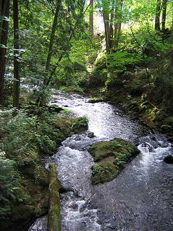 Whatcom-creek