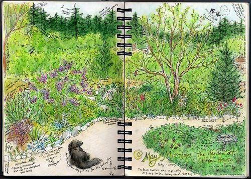 May-morn-sketch