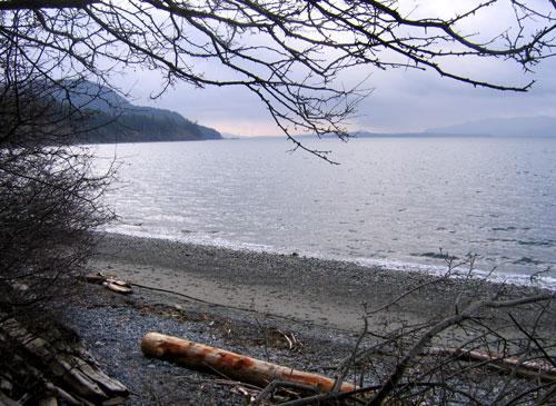 Beachspring